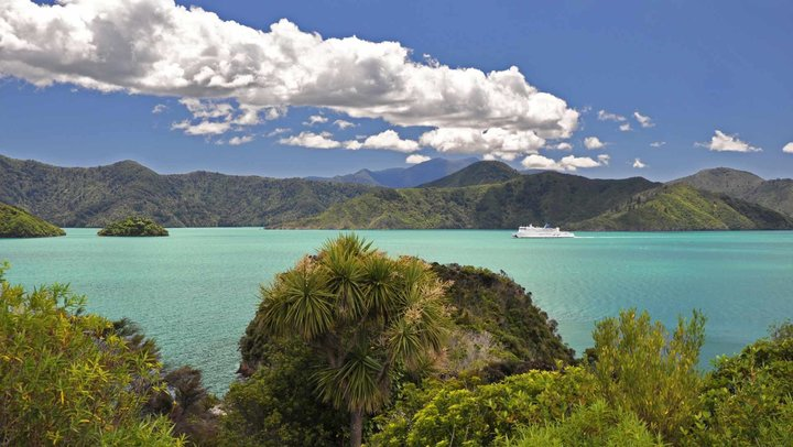 RentACampervan Holidays - Picton Campervan Rental