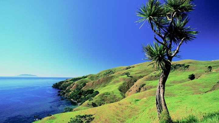 Campervan Hire New Zealand - Coromandel Coast