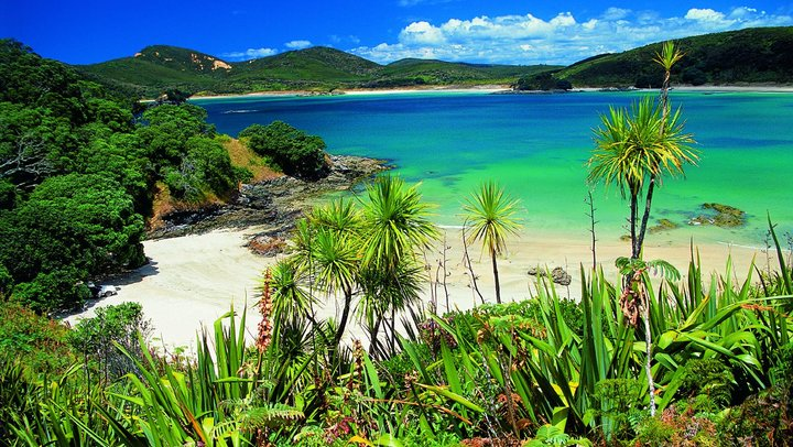 Karikari Peninsula - New Zealand