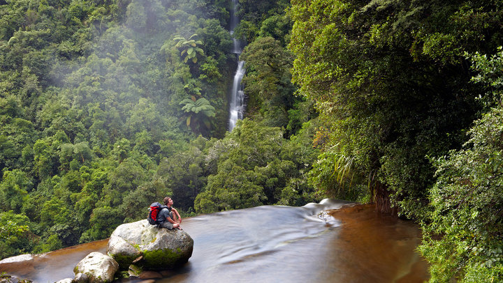 Te Urewera National Park North Island