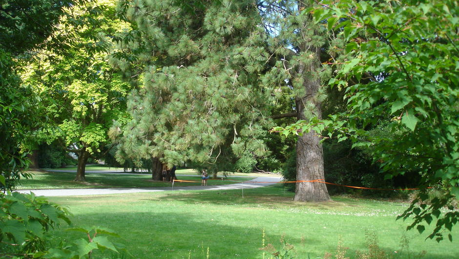 Campervan Rental Trip - Christchurch Botanic Gardens