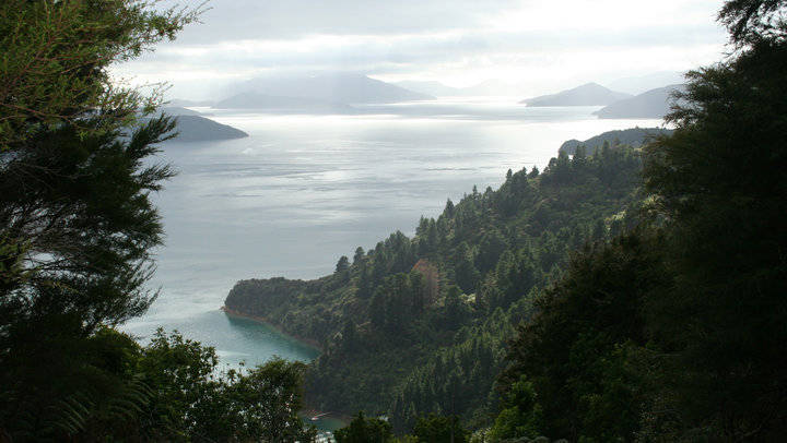 Marlborough Sounds - NZ Motorhome Hire