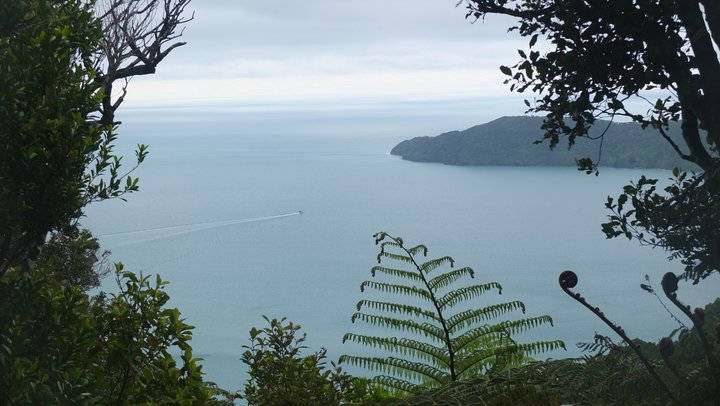 Motorhome Hire Picton Holiday - Queen Charlotte Sound